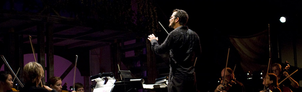 """""""…the orchestra played beautifully, with grace, power and delicacy…"""""""